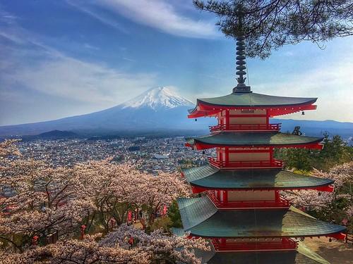 Chureito Pagoda Sakura cherry blossoms | by Manish Prabhune