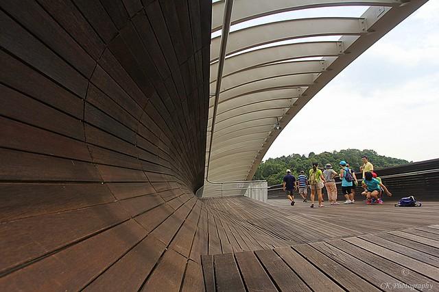 Hendersan Wave Bridge
