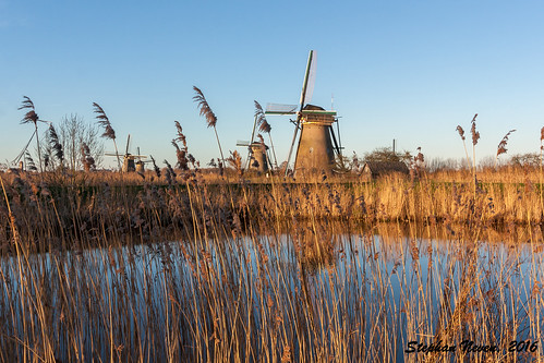 blue sky reed water windmill landscape outdoor clear land polder