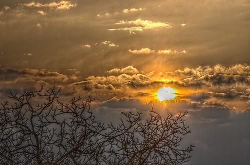 sky sun tree clouds sunrise pentax nuages arbre hdr contrejour
