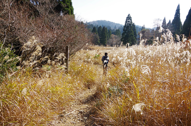 20141122-武奈ヶ岳(Saku)-0042.jpg