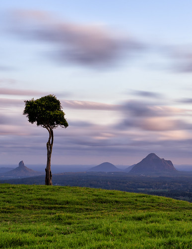 longexposure sunset nikon australia queensland d750 glasshousemountains sunshinecoast lonetree maleny southeastqueensland sunshinecoasthinterland