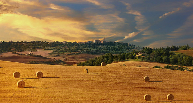 Le temps des moissons-Toscane