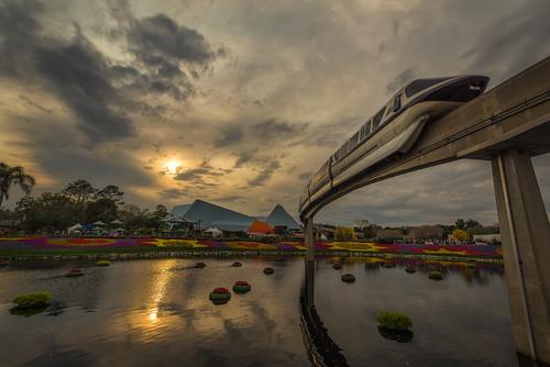 sunset reflection water clouds epcot disney monorail wdw waltdisneyworld flowerbeds flowerandgardenfestival oudoors nikon1424 monorailmonday nikond610