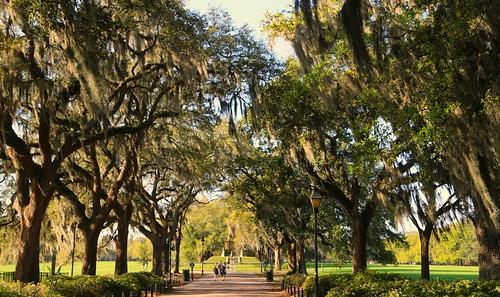 BREATHING SPACES - Springtime in Savannah, Georgia | by UGArdener