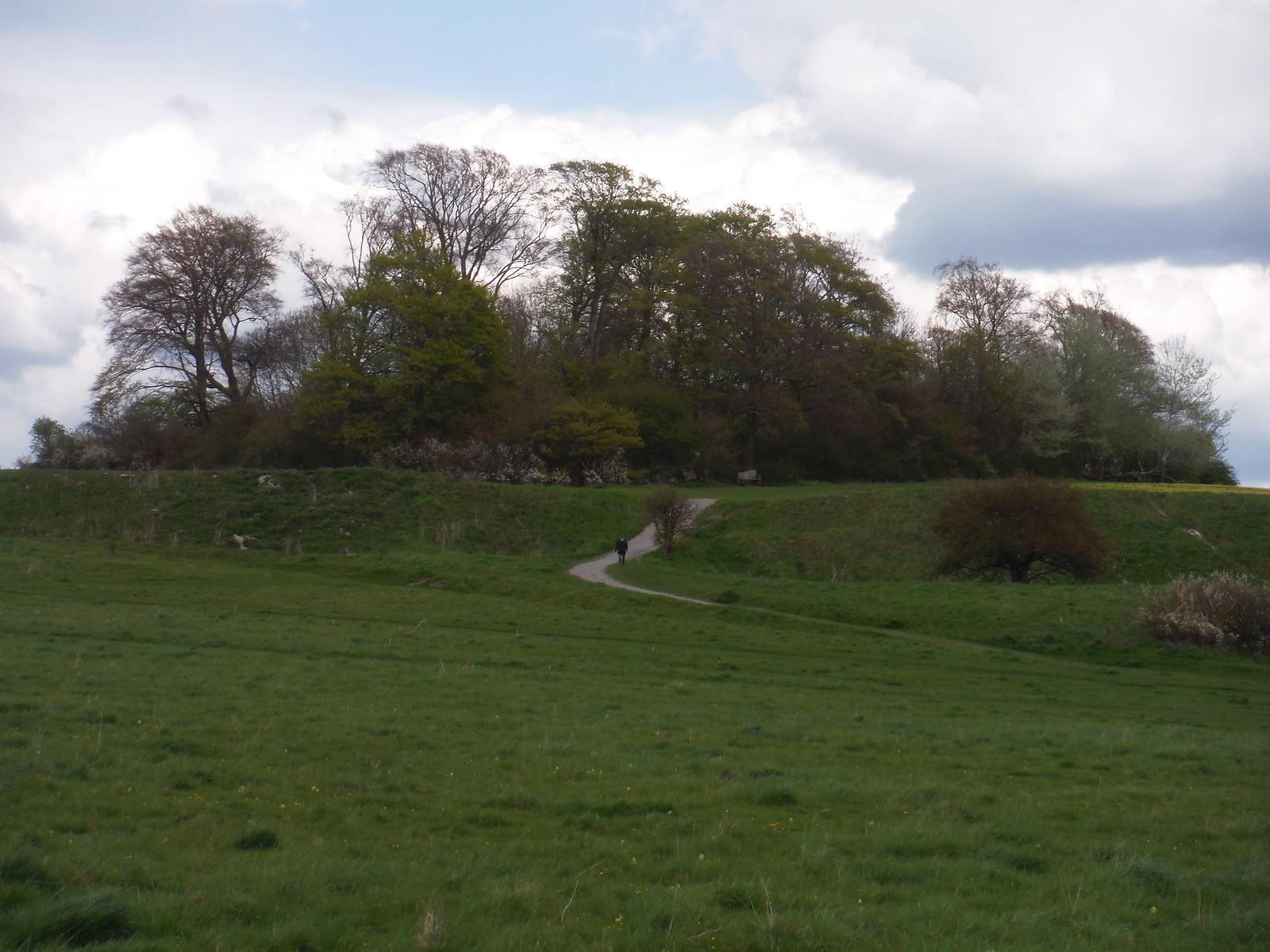 Castle Hill SWC Walk 44 - Didcot Circular
