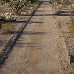 Desert Pavement
