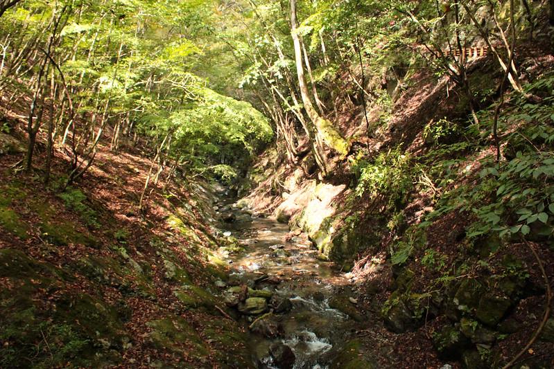 川苔山 登山