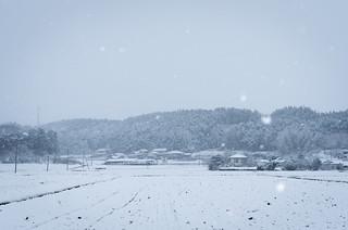 snow | by taro_taro_imo