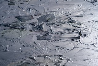 氷蓮 | by hiroching