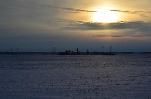 winter canada cold landscape december brandon manitoba prairie 12月 2015 カナダ 師走 shiwasu 十二月 じゅうにがつ jūnigatsu priestsrun ブランドン マニトバ州 平成27年