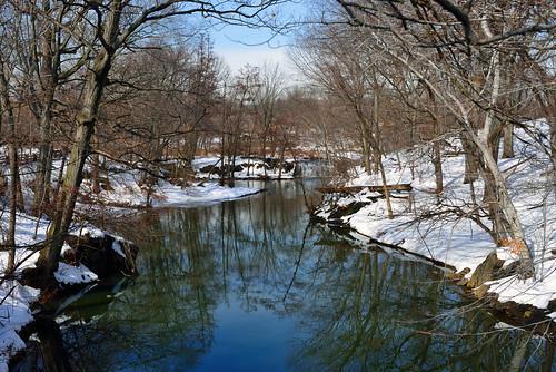 nyc newyorkcity nature landscape outdoors bronx waterfalls bronxzoo nycparks natureinthecity bronxriver bronxpark