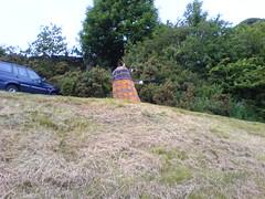Countryside Dalek