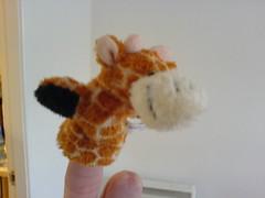 Finger Giraffe