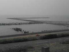 汐見台から日本海を見る