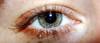 tawny eyes