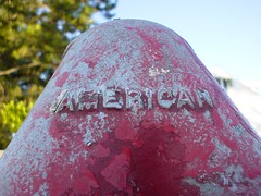 american_post