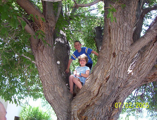 grandkids 2005 july 4 001