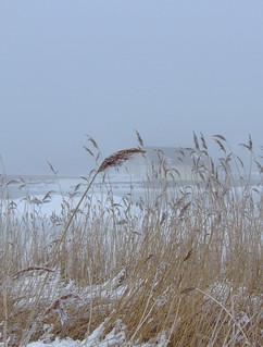 Vinter | by claeskrantz