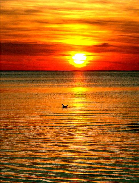 Sweden sunset 4