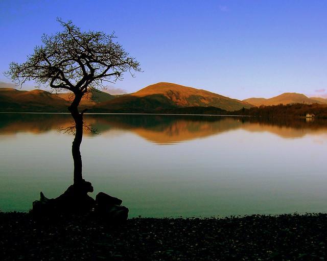 Serenity on Loch Lomond