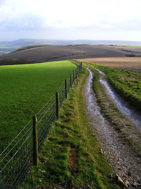 Book 3, Walk 39, Amberley to Pulborough The South Downs Way, looking east from Toby's Stone, 11 February 2007