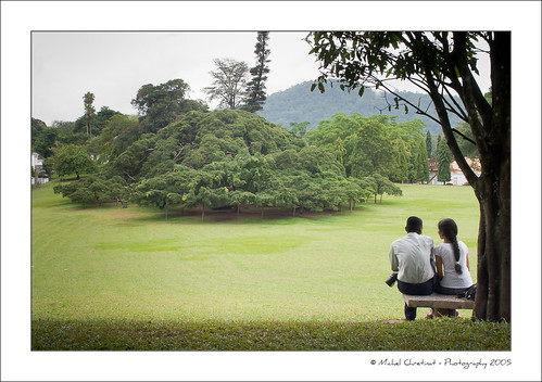 garden geotagged lovers srilanka kandy peradeniya geo:lat=7283125 geo:lon=80625228