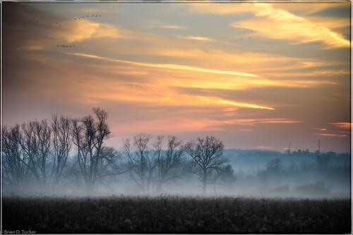 sunset fog december greenwood 2015 d610 greenwoodconservationarea briandtucker december2015