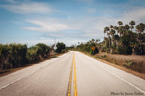 road color sunshine landscape coast colorful florida pavement grain scenic sunny polarizer gulfcoast crystalriver suncoast scenicdrive fortislandtrail naturecoast vsco vscofilm