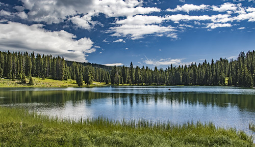 Lake on the top of Grand Mesa | by Michael Hart Photography