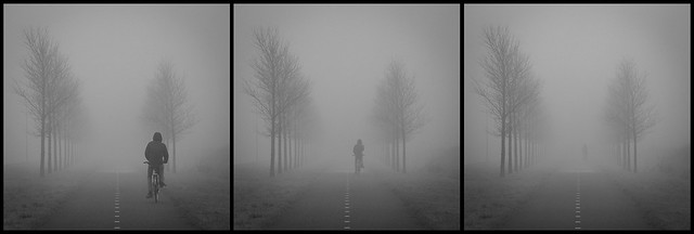 Disappearing into the fog...