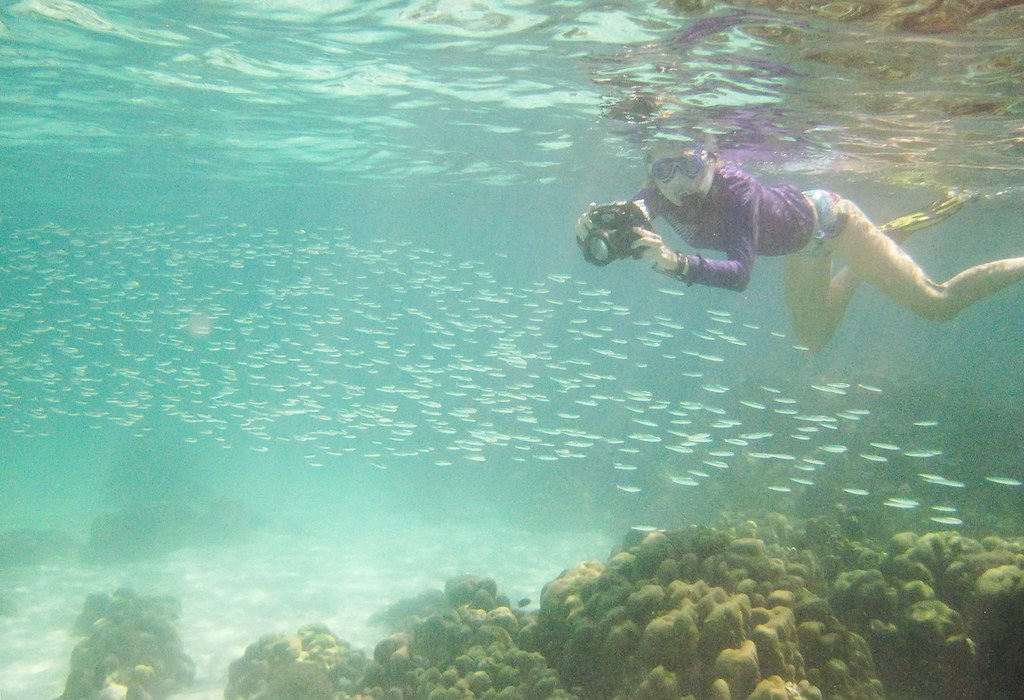 Snorkeling in Pattaya