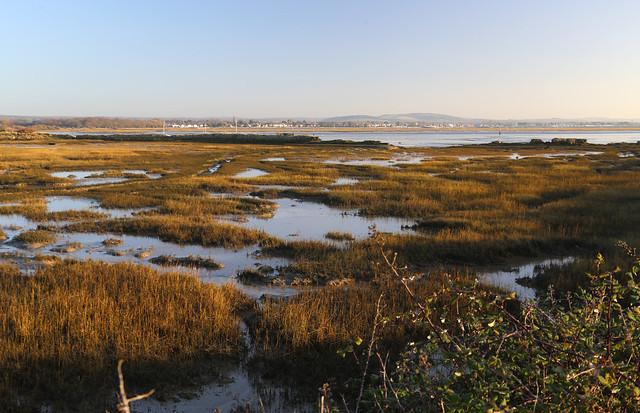 Marshes near Northney, Hayling Island
