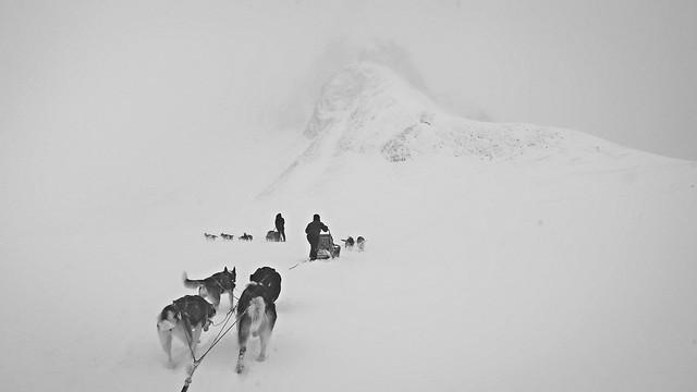 Lapland-0705