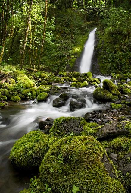 Falls on Ruckel Creek