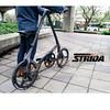STRIDA 18吋全碳纖摺疊車