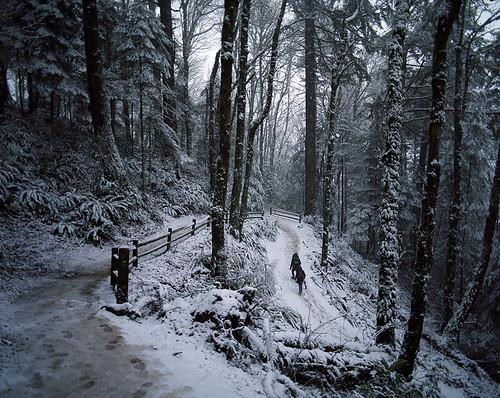 snow oregon mediumformat portland hiking snowy 120film pacificnorthwest 6x7 analogphotography forestpark snowday pittockmansion pentax6x7 kodakportra400