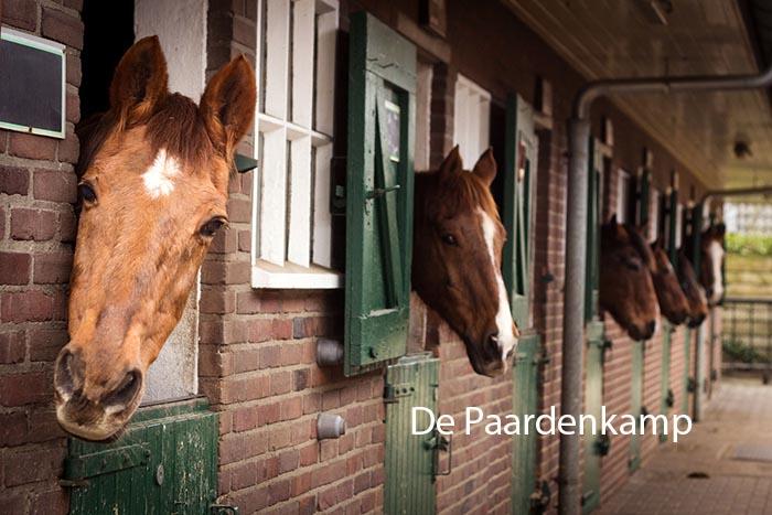 Soest Paardenkamp / Gagelgat