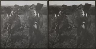 Akseli Gallen-Kallela's servants carry dead vultures near the Tana River in June 1910.