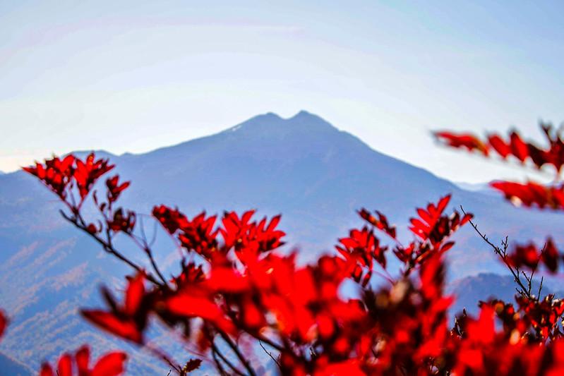 20141018-平ヶ岳-0206.jpg