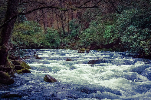 water river rocks stream northcarolina rapids wilderness greatsmokymountains oconaluftee