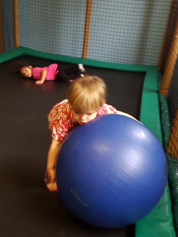 Retrieving the ball