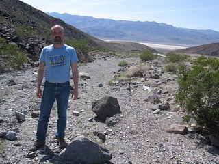 Jay in Death Valley landscape at Townes Pass | by Silver Hills Manor