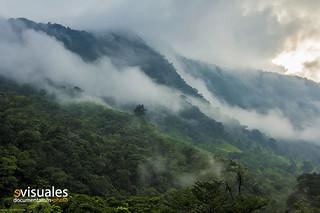 Sierra de Santa Marta, Los Tuxtlas. Veracruz