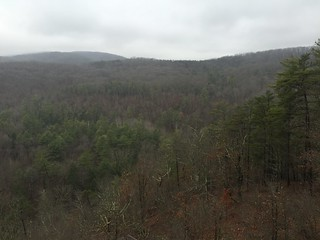 Photo of Green Ridge State Forest