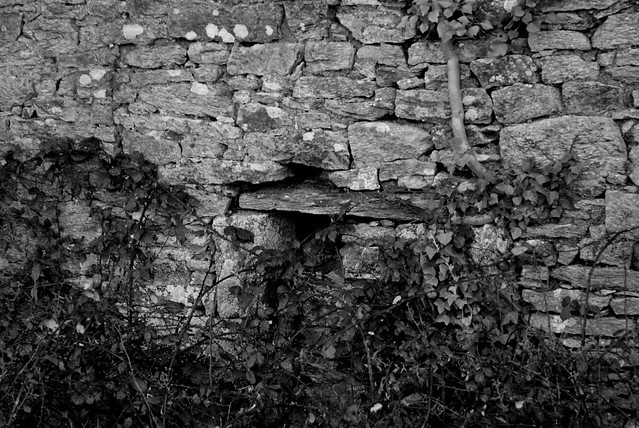 Ruines - Old farm