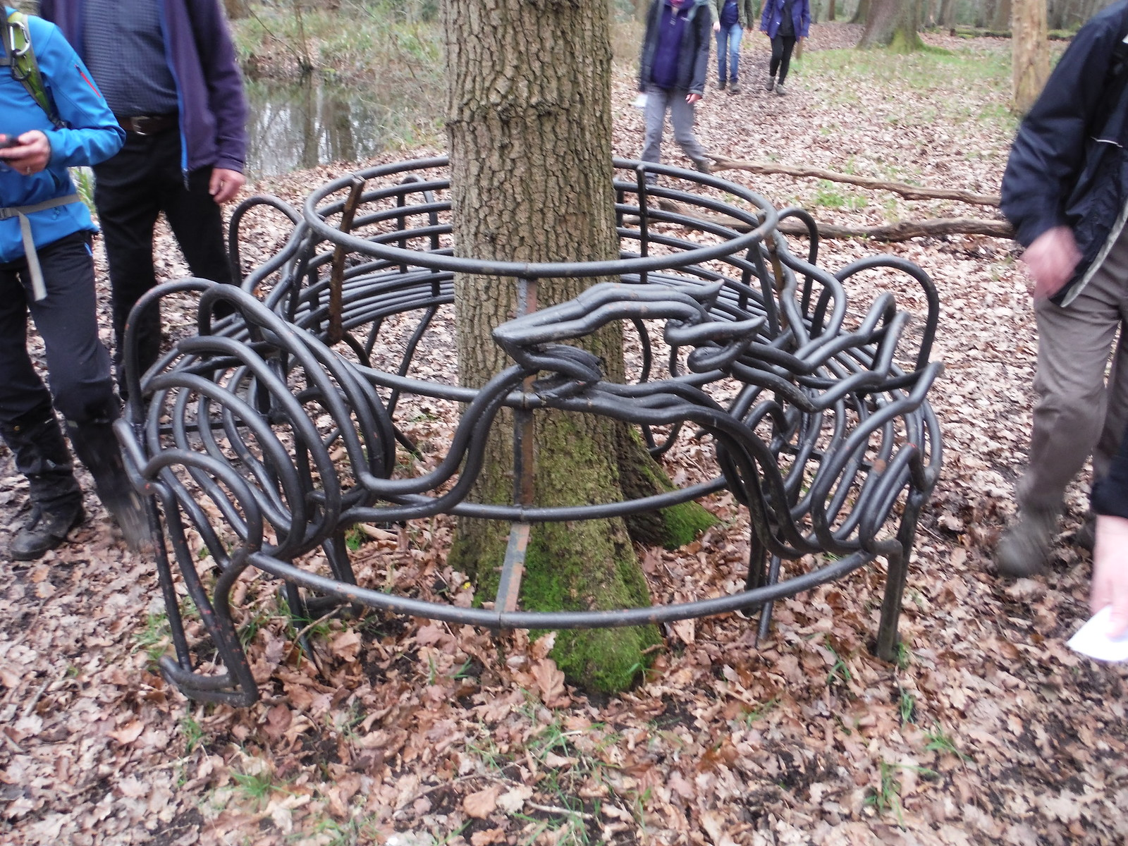 Deer chasing its tail in circular bench, Wormley Wood SWC Walk 168 Broxbourne Circular
