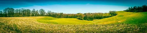 panorama field canon t5i davidsharo