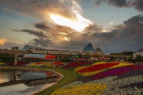 sunset epcot disney monorail wdw waltdisneyworld flowerbeds nikon28300 nikond610