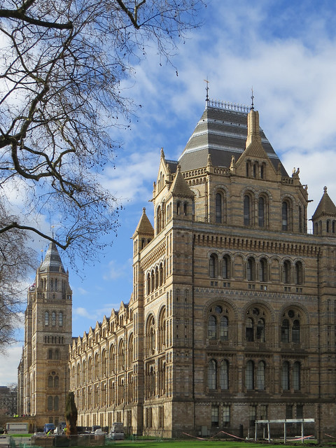 The Natural History Museum (1)